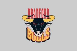 Bradford sign former Wales international
